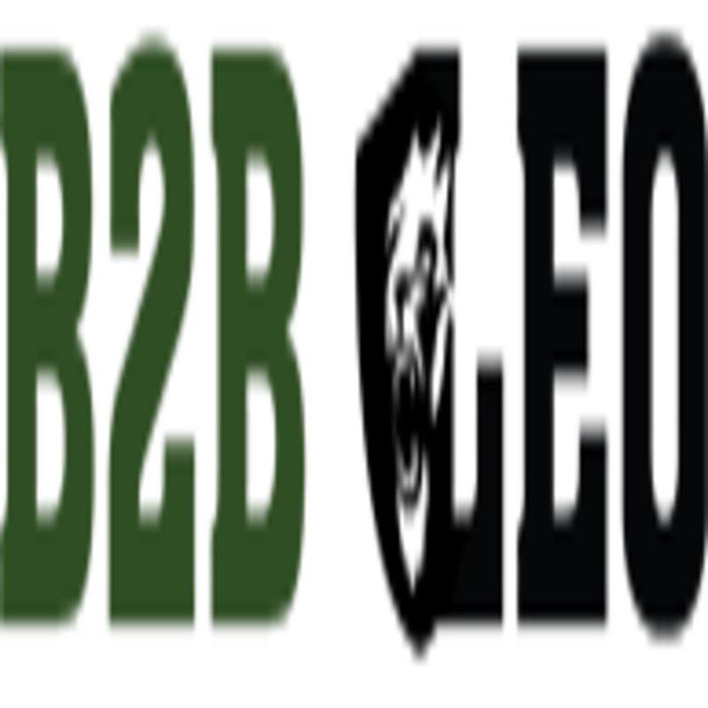 b2bleo Logo