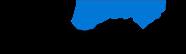 ba-insight Logo