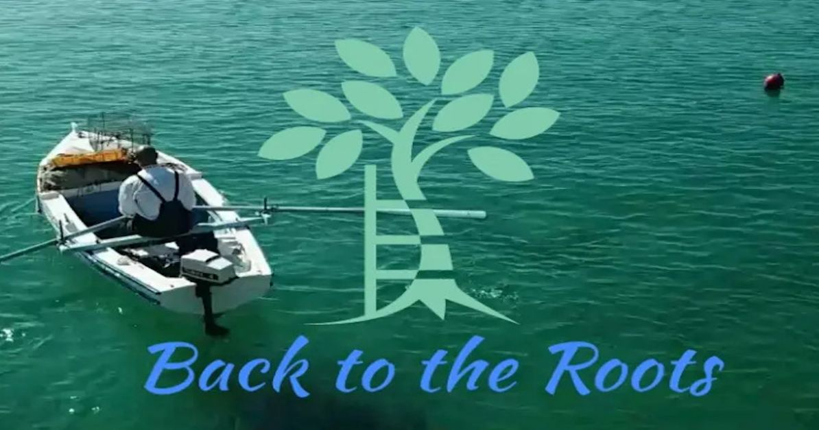Back to the Roots Project Logo