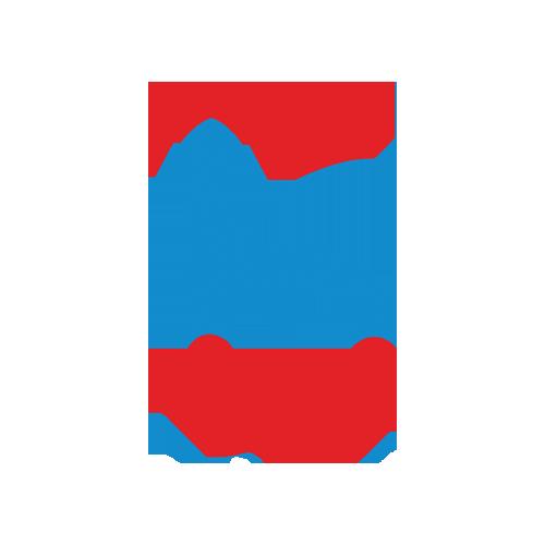 Banknomics Logo