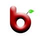 berryrobotics Logo