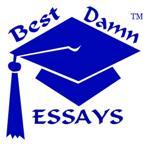 bestdamnessays Logo