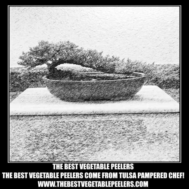 The Bonsai Marketing Group (Best Vegetable Peelers) Logo