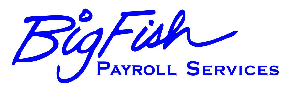 Big Fish Payroll Services Logo