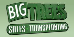bigtreesupply Logo