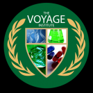 The Voyage Institute Logo