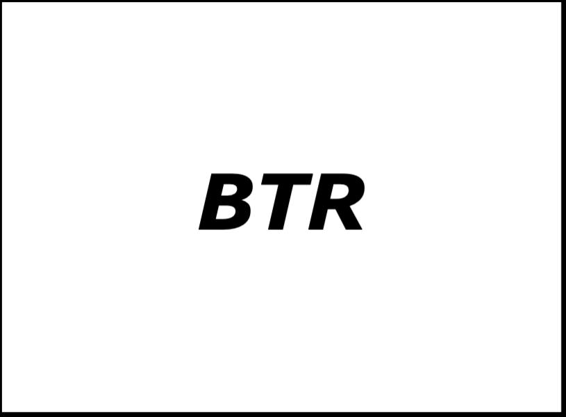 BizTechReports Logo
