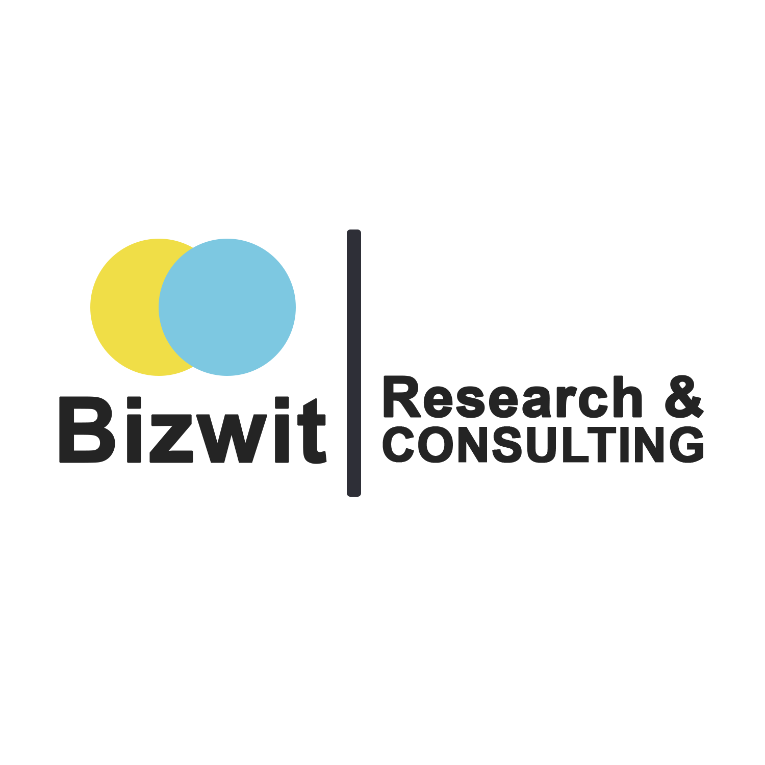 Bizwit Research & Consulting LLP Logo