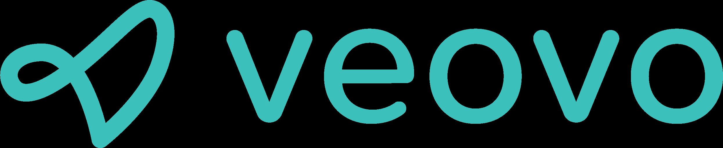 blipsystems Logo