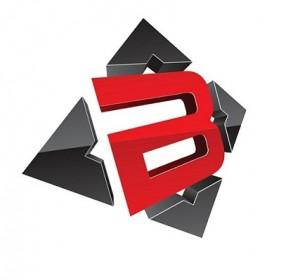 Blitz Inc   Bellevue, WA Logo