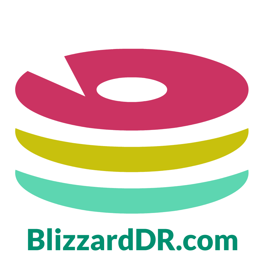 Blizzard Data Recovery Logo