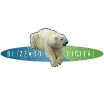 Blizzard Digital Corporation Logo