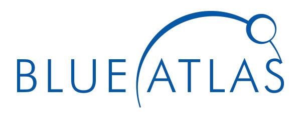Blue Atlas Marketing Logo