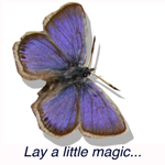 Blue Butterfly Flooring LTD Logo