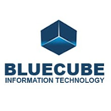 Bluecube Information Technology Logo