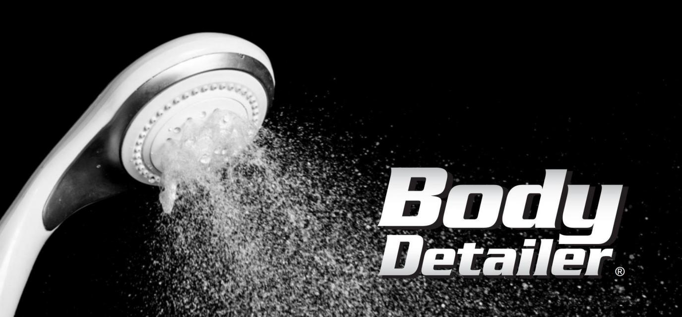 Body Detailer LLC Logo