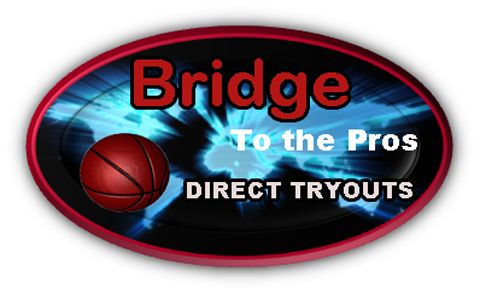 Bridge to the Pros Logo