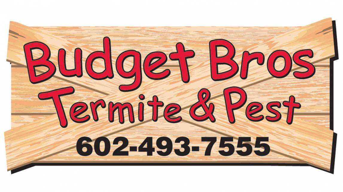 budget brothers termite & pest Logo
