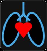 CardioPulmonary Diagnostic, LLC Logo