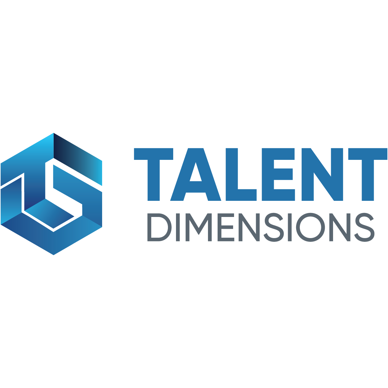 Talent Dimensions Logo