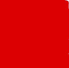 carlosaleman Logo