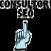Consultor SEO Logo