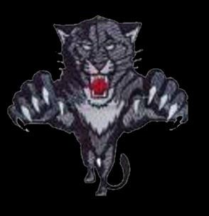 Wildcat SEO Service Logo