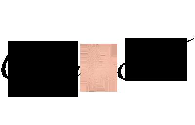 Curvy Fox Enterprise, LLC Logo