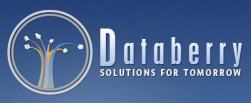 Databerry, Inc. Logo