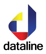 Dataline Software Logo