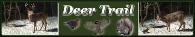 Deer Trail Logo
