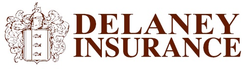 delaneyins Logo