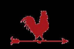 diamondtdesign Logo