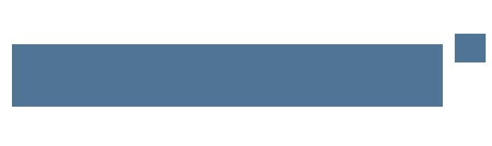 Digital Odyssey IT Logo