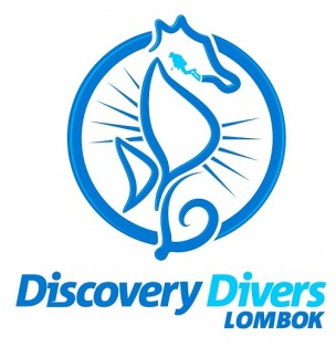 Discovery Divers Logo