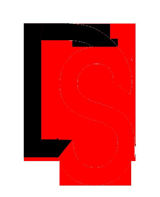 Dizitalsquare Logo