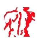 docbrok Logo