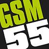 dovema-gsm55 Logo