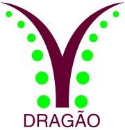 Dragão Porto Logo