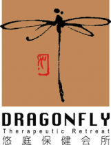 Dragonfly Therapeutic Retreat Logo