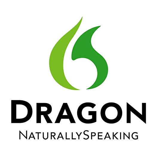 dragonsupportservice Logo