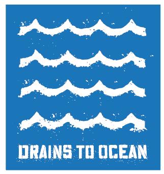 Drains to Ocean Logo