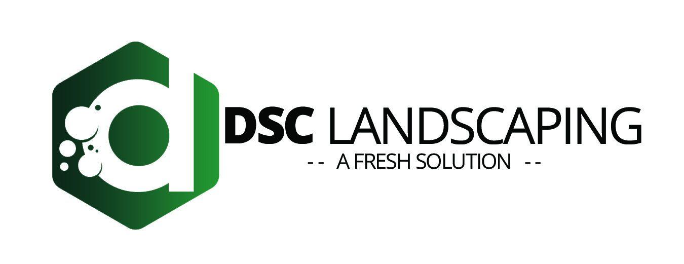 dscsolutions Logo