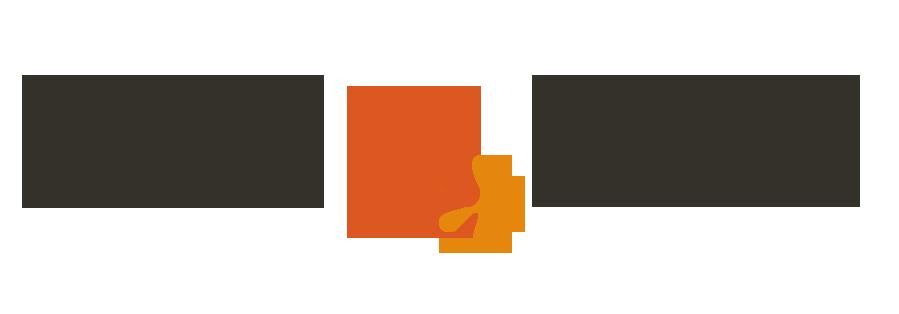 Dustflake Logo