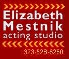Elizabeth Mestnik Acting Studio Logo