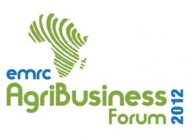 EMRC International Logo