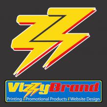 D3CS VizzyBrand Logo