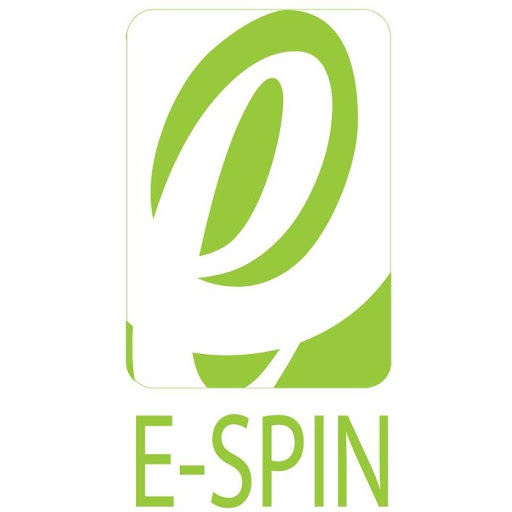 E-SPIN GROUP OF COMPANIES Logo