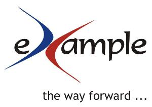 eXample Consulting Group Logo