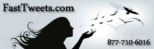 Fast Tweets LLC Logo